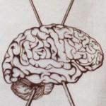 brainknits
